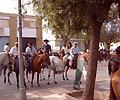 Feria Horses
